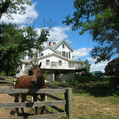 h123 Best Horse Farms Around Baltimore